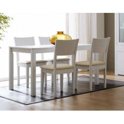 Conjunto Mesa 140x85 extensible y 4 sillas.
