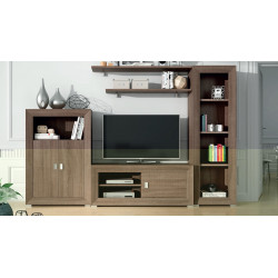 Mueble de Salón. 290 cm.