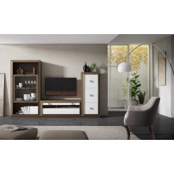 Mueble de salón 290 cm.