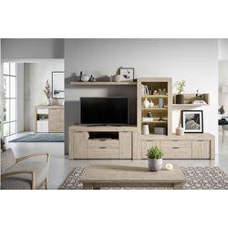 Mueble de salón 300 cm