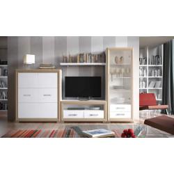 Mueble de Salón modular 06 de 298 cm